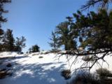 TBD Middle Fork Vista - Photo 11