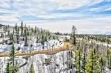 1486 Chief Trail - Photo 6