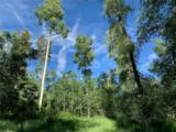 150 Game Trail Road - Photo 11
