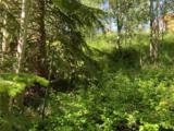 150 Game Trail Road - Photo 6