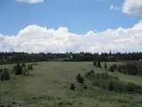 1321 Lippzana Road - Photo 2