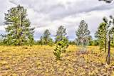 996 Grand Teton Drive - Photo 16