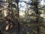 180 Indian Mountain Court - Photo 2