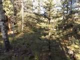 180 Indian Mountain Court - Photo 6