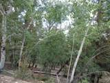0 Redhill Forest - Photo 5