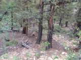 0 Redhill Forest - Photo 6