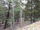 0 Redhill Forest - Photo 7