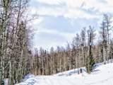 893 Lumberjack Road - Photo 12