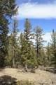 565 Middle Fork Vista - Photo 10