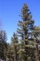 565 Middle Fork Vista - Photo 4