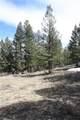 565 Middle Fork Vista - Photo 8