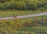 1006 County Road 341 - Photo 18