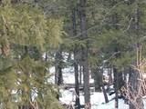 0 Middle Fork Vista - Photo 4
