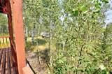 465 Mount Guyot Circle - Photo 35