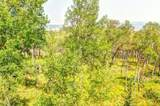 465 Mount Guyot Circle - Photo 4