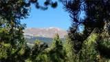 820 Columbine Road - Photo 19