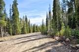 585 Porcupine Road - Photo 3