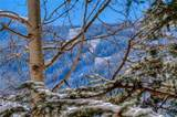 23137 Aspen Way - Photo 27