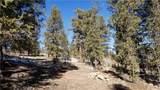 4437 Middle Fork Vista - Photo 10