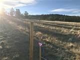 1658 Navajo Trail - Photo 2