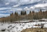 702 Pinto Trail - Photo 3