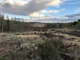 756 Iron Mountain Road - Photo 9