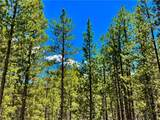 198 Spruce Drive - Photo 3