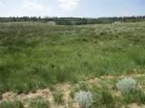 1349 Pinto Trail - Photo 4