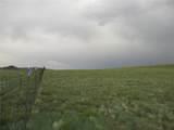 00 Antero Trail - Photo 1