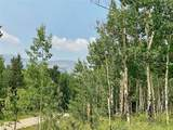 295 Silver Plume Road - Photo 2