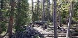 463 Gold Trail Circle - Photo 3