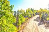 1311 Signal Ridge Road - Photo 1