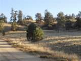 603 Goldenburg Canyon Road - Photo 12