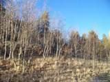 21 Pintail Way - Photo 1