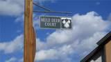 103 Mule Deer Court - Photo 6