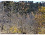 1100 Osprey Road - Photo 2
