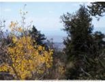 1100 Osprey Road - Photo 4