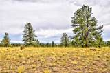 996 Grand Teton Drive - Photo 20