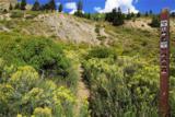 205 Angler Mountain Ranch Road - Photo 12