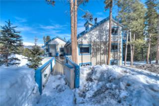 517 Moonstone Road, Breckenridge, CO 80424 (MLS #S1004048) :: CENTURY 21, The Smits Team
