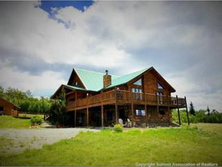 370 French Pass Circle, Jefferson, CO 80456 (MLS #S1004100) :: CENTURY 21, The Smits Team