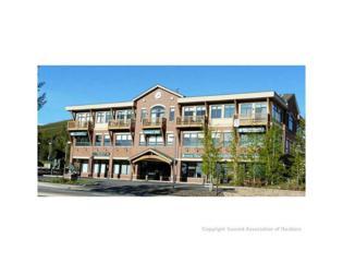 325 Lake Dillon Drive 208/209, Dillon, CO 80435 (MLS #S1004114) :: CENTURY 21, The Smits Team