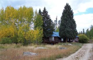 12701 Us Highway 34, Grand Lake, CO 80447 (MLS #S1004122) :: CENTURY 21, The Smits Team