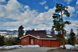 75 Snowberry Way, Dillon, CO 80435 (MLS #S1004156) :: CENTURY 21, The Smits Team