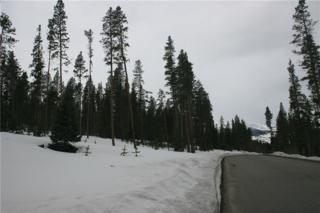 1496 Highlands Drive, Breckenridge, CO 80424 (MLS #S1004196) :: CENTURY 21, The Smits Team