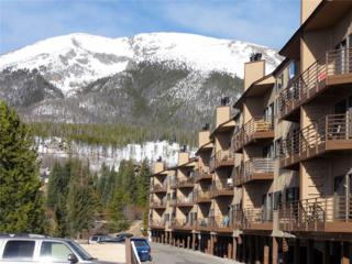 9800 Ryan Gulch Road 206A, Silverthorne, CO 80498 (MLS #S1004464) :: CENTURY 21, The Smits Team