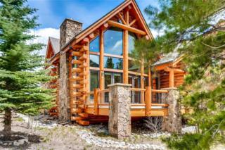 133 Mount Royal Drive, Frisco, CO 80443 (MLS #S1004936) :: CENTURY 21, The Smits Team