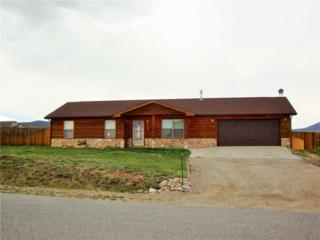 1312 Meadow Drive, Fairplay, CO 80440 (MLS #S1005041) :: CENTURY 21, The Smits Team