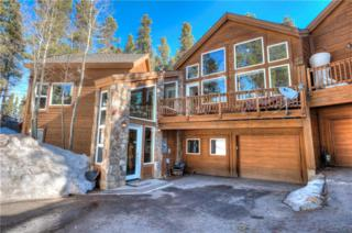 67 Gold King Way, Breckenridge, CO 80424 (MLS #S1004098) :: CENTURY 21, The Smits Team