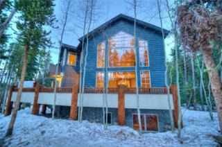 101 Klack Road, Breckenridge, CO 80424 (MLS #S1003967) :: CENTURY 21, The Smits Team